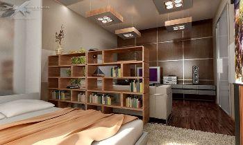 Спальная и зал в одной комнате